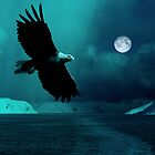 Blue eagle by Per E. Gunnarsen