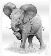 Cute Elephant sketch Poster