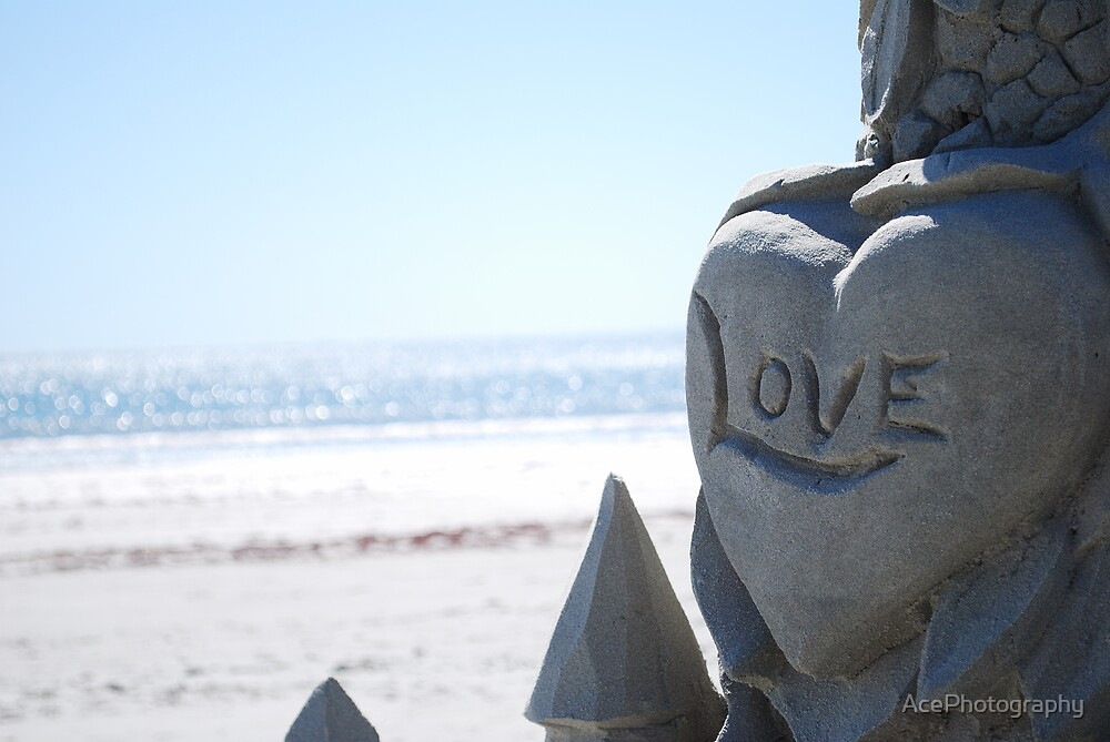 Love On The Beach by AcePhotography