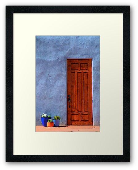 Abiquiu Door  by Mitchell Tillison