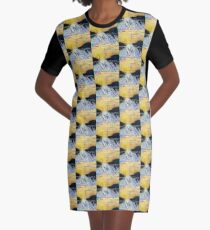 St. Anthony Speaks to the Sardines Graphic T-Shirt Dress