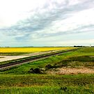 Country Landscape by Larry Trupp