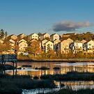 Houses on Belchers Marsh Park #02 by kenmo