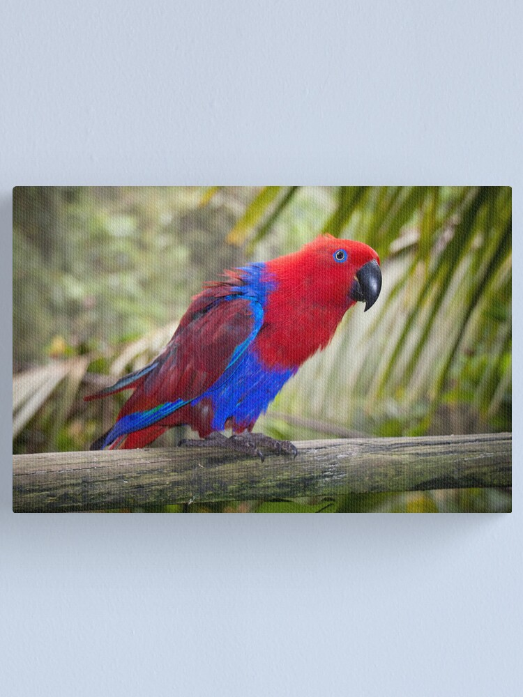 Alternate view of Big Red Canvas Print