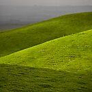 folds of green by Tony Middleton