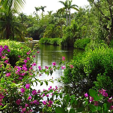 Tropical Lake at the Zoo by posyrosie