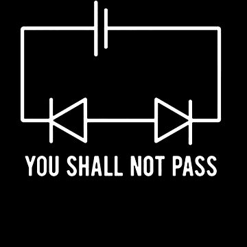 Funny Physics T Shirt Gift-You Shall Not Pass for Women Men by Anna0908
