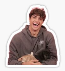 noah centineo and puppies Sticker