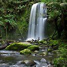 Beauchamp Falls  by Stephen Colquitt