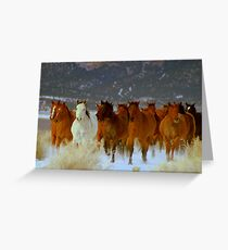 HORSE DRIVE ~CHERRY CREEK NEVADA  Greeting Card