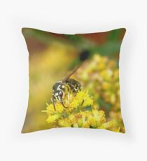 092109-384 Throw Pillow
