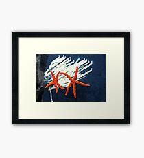 Starfish & Corel Framed Print