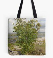 Burren Tree Tote Bag