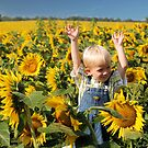 Sunflower Season by Kevin D. Raney