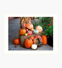 Fall Display Art Print