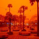 Sandstorm, Sydney, Australia  by Of Land & Ocean - Samantha Goode