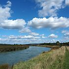 The South Downs seen from the River Arun 1 by Josie Gilbert