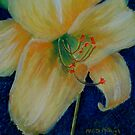 Yellow Lily by Marita McVeigh