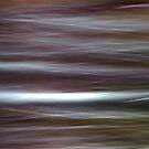 Wild Wind by Kitsmumma