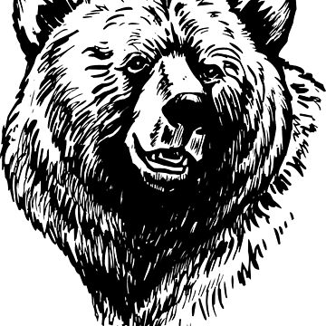 Grizzly Bear, Brown Bear Design by Jobrien58