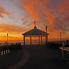 dawn at the fisherman's pier  by marianne troia