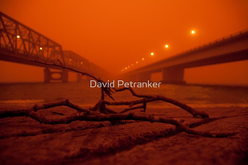 Tom Uglys and the Captain Cook bridges by David Petranker