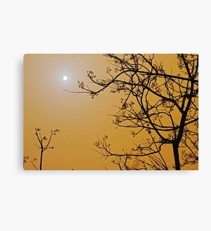 Queensland dust storm Canvas Print