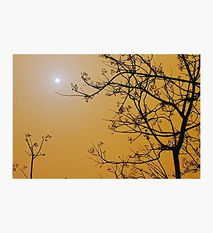 Queensland dust storm Photographic Print