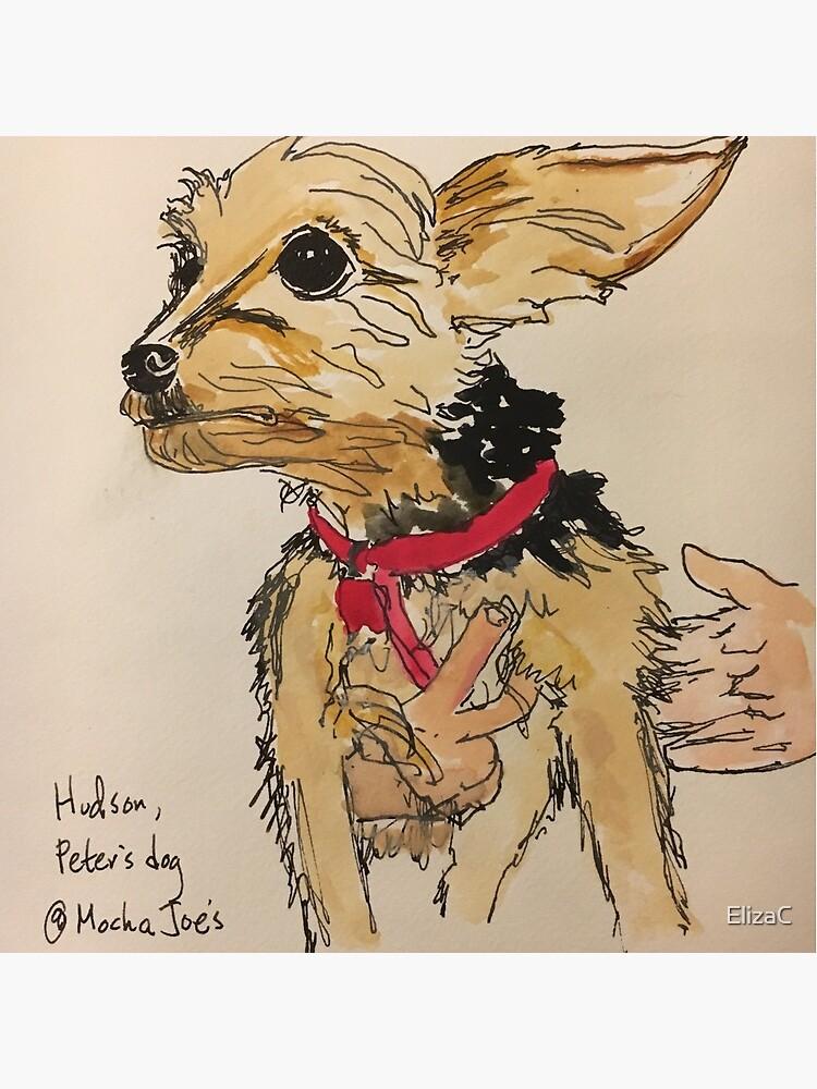 Hudson, Peter's dog by ElizaC