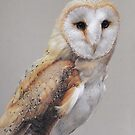 Belle of the Barn Owls by Blue-goo