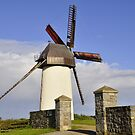Windmill in Skerries by Martina Fagan