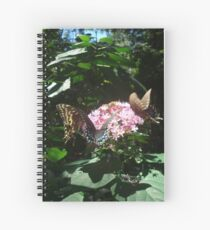 The Orgy in my Yard Spiral Notebook