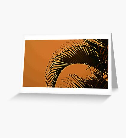 Red Dust Storm Palm Tree-Brisbane-redcliffe Greeting Card