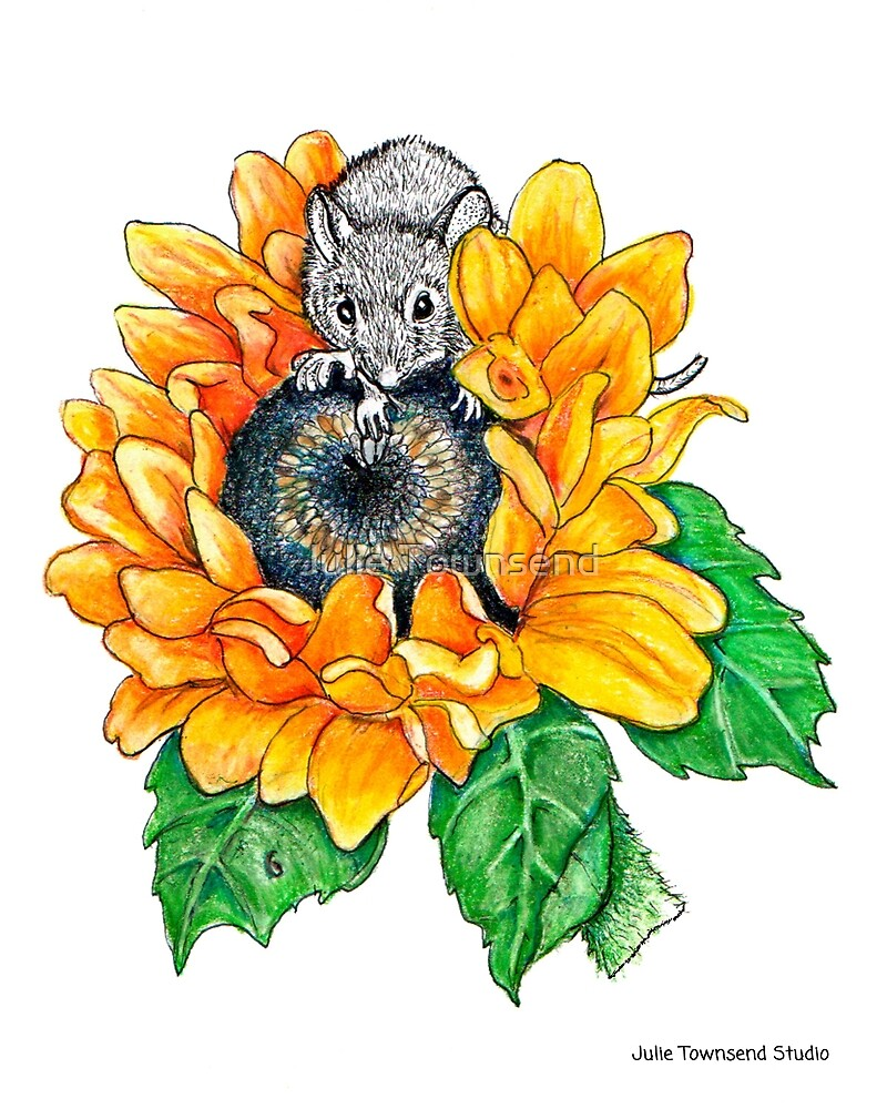 Sunflower Mouse by Julie Townsend
