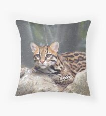 Who You Look'n At Throw Pillow
