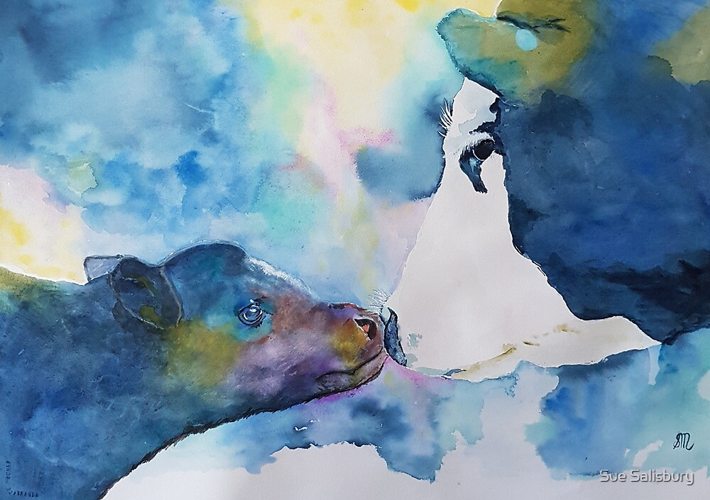 Cow and Calf by Sue Munoz