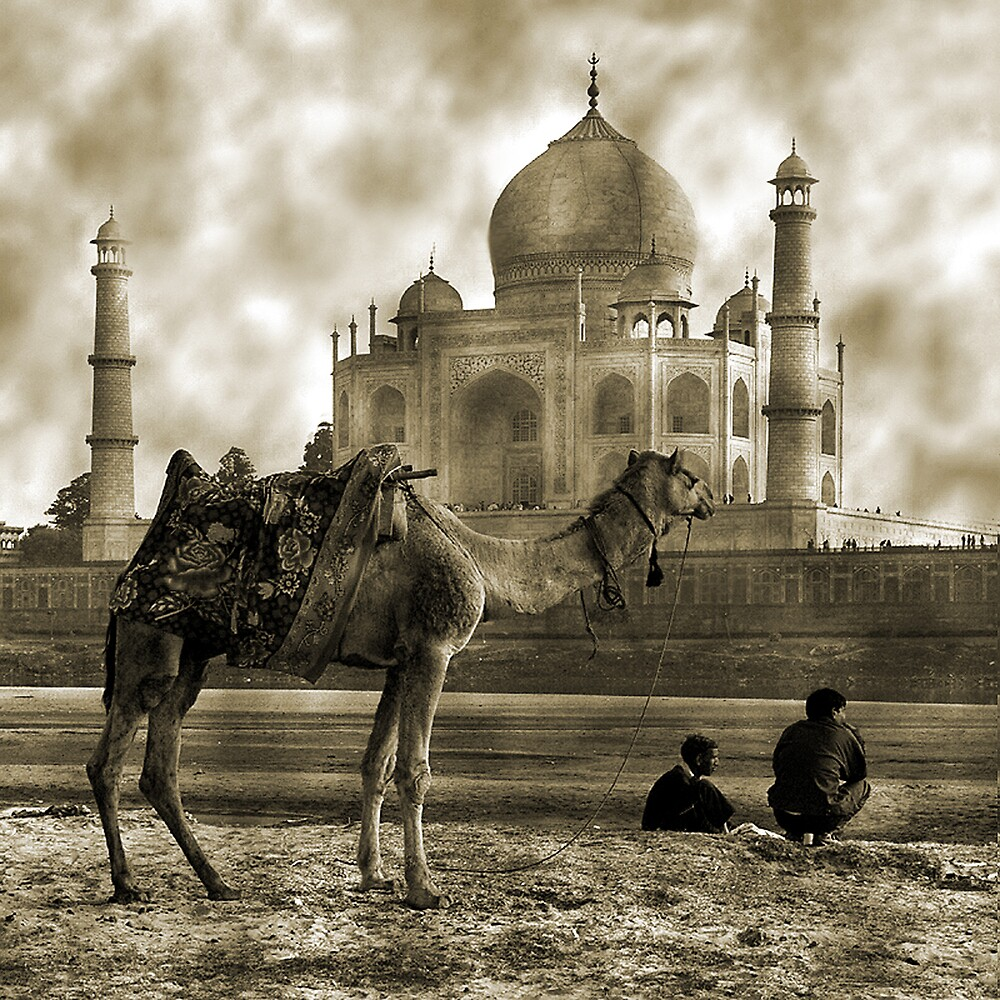 One Moment in Time by Mukesh Srivastava
