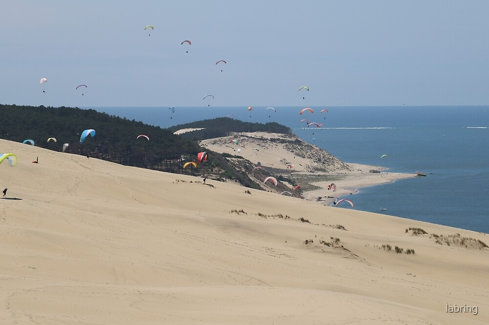 Colourful Dunes by labring
