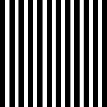 Beetlejuice Stripes by iheartclothes