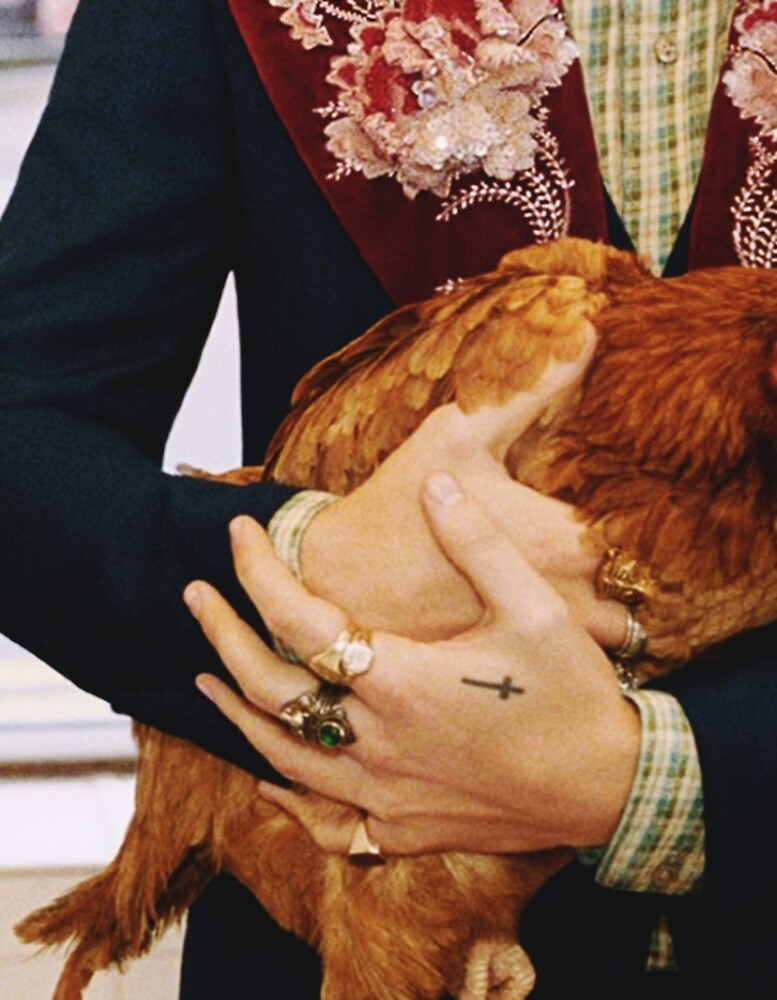 HARRY STYLES CHICKEN by cwxo