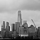 Lower Manhattan From Jersey City by pmarella