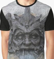 #sculpture #stone #statue #architecture #ancient #face #old #head #art #fountain #lion #wall #history #gargoyle #detail #building #marble #monument #antique #relief #decoration #religion #carving Graphic T-Shirt