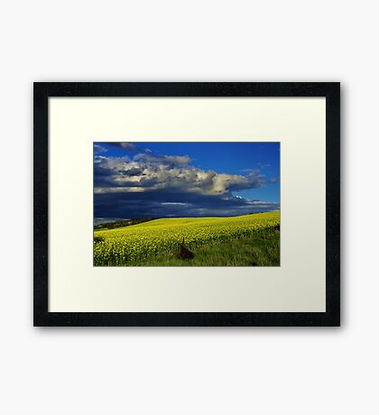 """""""The Yield"""" Framed Print"""