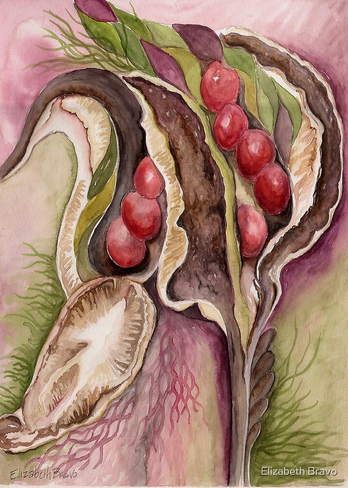 Red Berries by Elizabeth Bravo