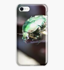 The rare rose chafer - image 2 iPhone Case/Skin