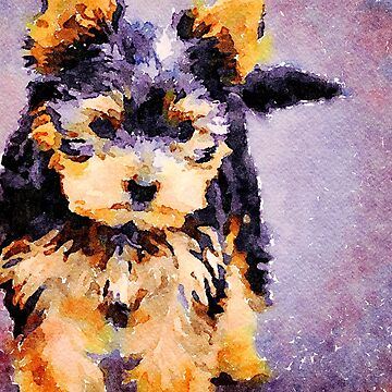 Yorkshire Terrier Dog by leonwoods