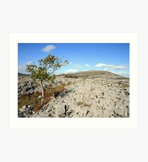 Mullaghmore mountain Art Print