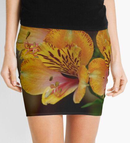 SHADES OF AUTUM Mini Skirt