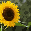 Oh Look !! Another Sunflower !!!! by RebeccaWeston