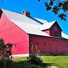 Little Red Barn by Sandra Fortier